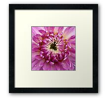 So Close (available in ipad case) Framed Print
