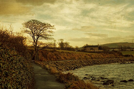 Along the shore by Agnes McGuinness