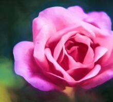 Pink Rose (GO1) Sticker