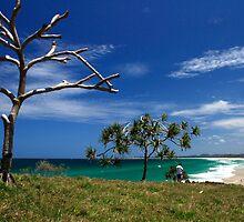 Dreamtime Beach by Noel Elliot