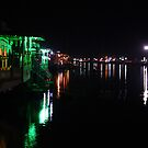 Night Beauty Of Kashmir by PALLABI ROY
