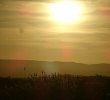Sun Set over an African field  by nicolemilard21