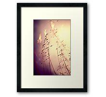 Imagine... Framed Print