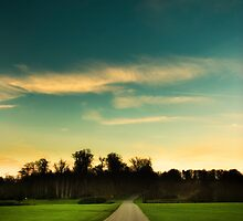Country Road, Kent England by Jai Honeybrook