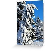 Garden in Winter II Greeting Card