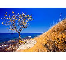 autumn coast line Photographic Print