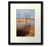 tree portraite in November Framed Print
