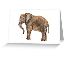 Illustration of african elefant Greeting Card