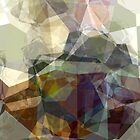 Abstract Polygons 218 by Christopher Johnson