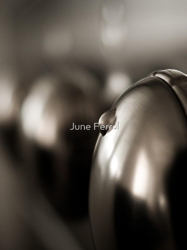 YOU'RE SUCH A KNOB by June Ferrol
