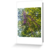 Purple Branch Greeting Card
