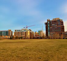 Apartments Near the Park by Jake Kauffman