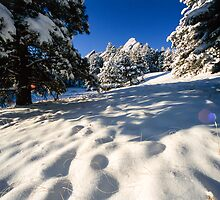 Deep In Snow At The Flatirons by Gregory J Summers