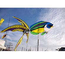 Colourful fish windmill, Brest Maritime Festival 2008 , Brittany, France Photographic Print