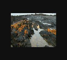 Orange Lichen, Sulphur Creek, Northern Tasmania, Australia. Unisex T-Shirt