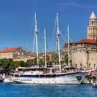 The Harbour at Split by Tom Gomez