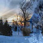 Winter Wonderland by Greta  McLaughlin