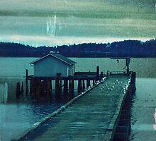 Penn Cove by ltdRUN