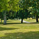 Royal Park, Launceston, Tasmania by fotosic
