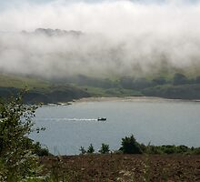 Sea fog on the Erme Estuary, South Hams, Devon, UK by silverportpics