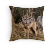 Two Wolves Throw Pillow
