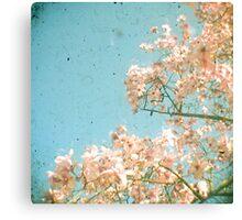 Magnolia Tree Canvas Print