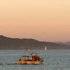 Sunset on San Francisco Presidio Coast - 4:59pm by photoartful