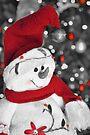 Frosty Christmas Red B&W by ©Dawne M. Dunton