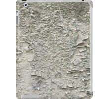 Cracked wall iPad Case/Skin