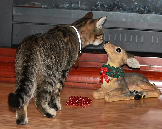 Mittens Meet Deer by Rose Landry