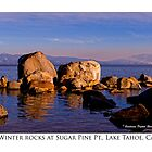 Winter Rocks at Sugar Pine Point, Lake Tahoe, CA by Ellen  Holcomb