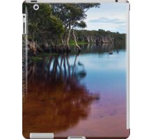 iPad case - Lake Ainsworth Morning iPad Case/Skin