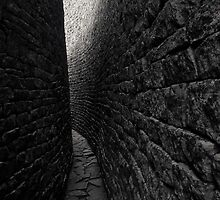 The Inner Passage of the Great Enclosure at Great Zimbabwe II by Adrian Park