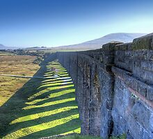 The Ribblehead Viaduct 5 by Colin  Williams Photography