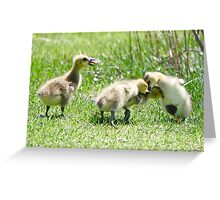 I know your quacking about me! Greeting Card