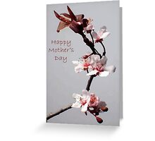 Pink Plum Blossom With Happy Mother's Day Greeting Greeting Card