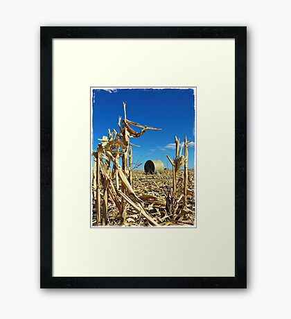 Remains of the Harvest Framed Print