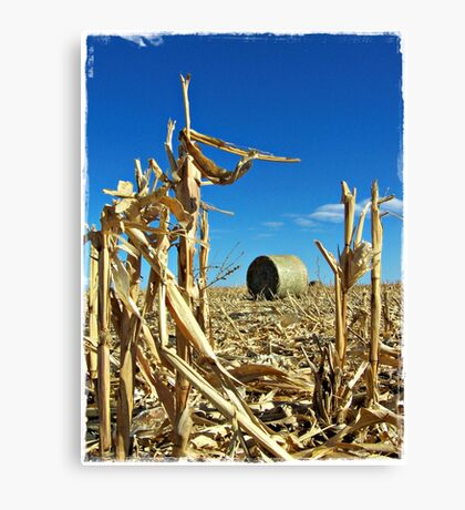 Remains of the Harvest Canvas Print