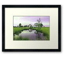 Tranquil pool Framed Print