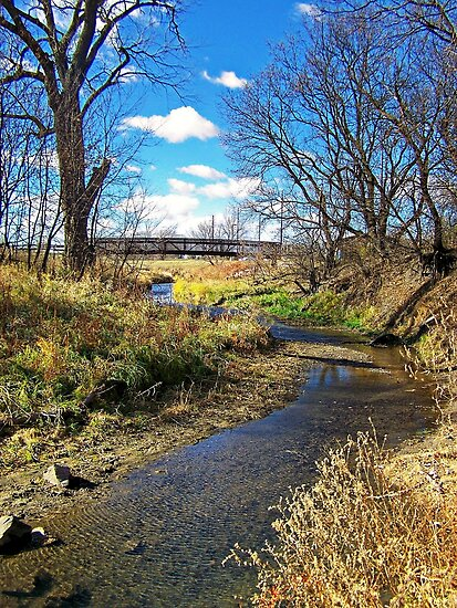 Banks of Skunk Creek by Greg Belfrage