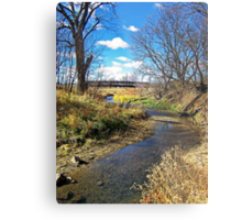 Banks of Skunk Creek Metal Print