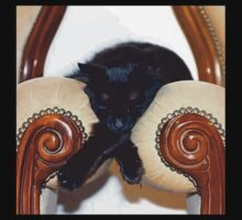 Relaxed Black Cat Sleeping Between Two Chairs One Piece - Short Sleeve