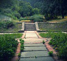Overgrown Courtyard by RachelBobby