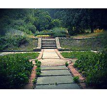 Overgrown Courtyard Photographic Print