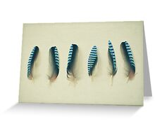 Feathers #1 Greeting Card