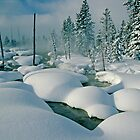 Yellowstone Snow by Eric Albright Photography