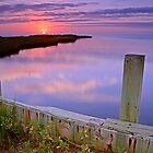 Pamlico Sunset by Eric Albright Photography
