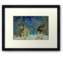 Wolf Brothers Framed Print