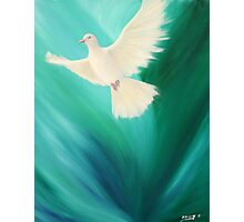 Peace Release Photographic Print