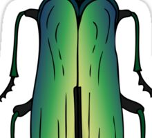 Green jewel beetle Sticker